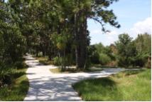 waterleaf-trails