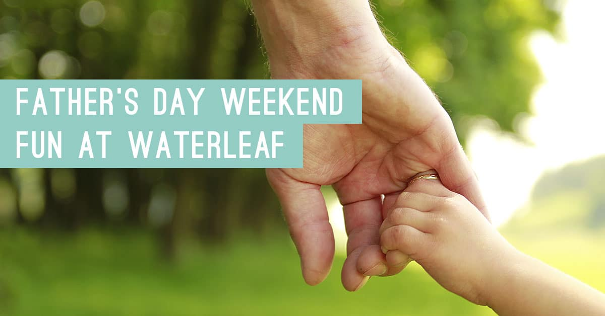 Waterleaf Blog