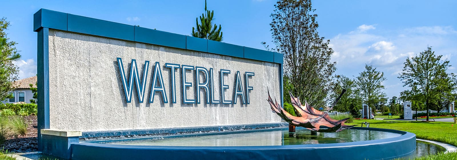 WaterLeaf Blog